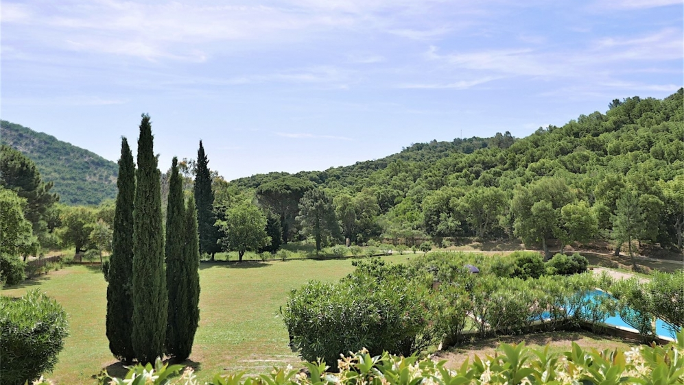 Amazing authentic Provencal villa